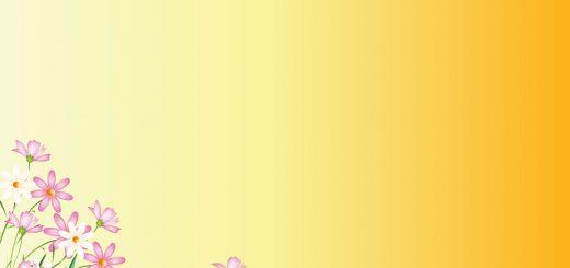 Flower Yellow Background